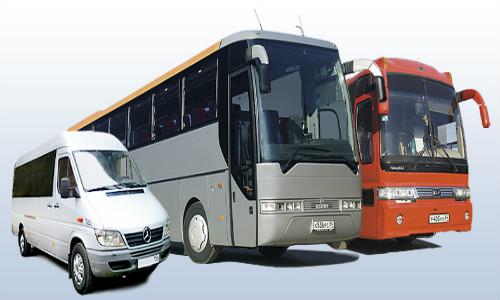 transportnaya-licenziya